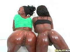 Black girls are posing together with their round asses shining from oil.